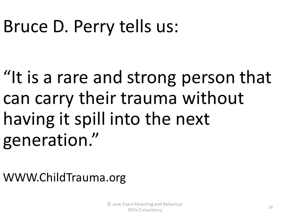 © Jane Evans Parenting and Behaviour Skills Consultancy 14 Bruce D. Perry tells us: It is a rare and strong person that can carry their trauma without