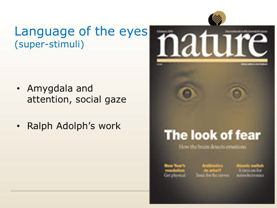 Language of the eyes (super-stimuli) Amygdala and attention, social gaze Ralph Adolphs work