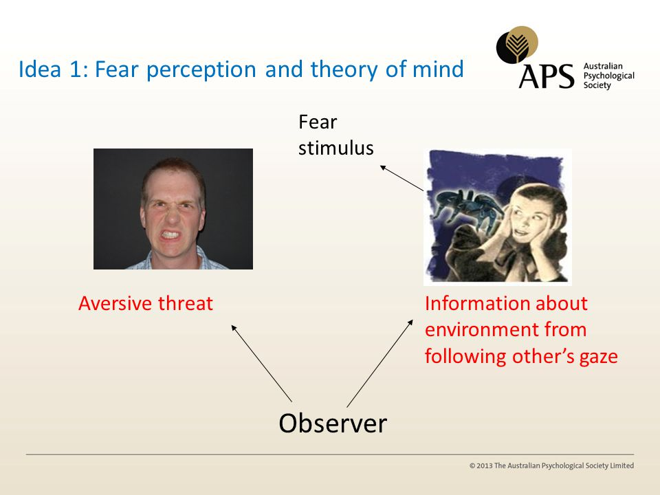 Fear stimulus Aversive threatInformation about environment from following others gaze Observer Idea 1: Fear perception and theory of mind