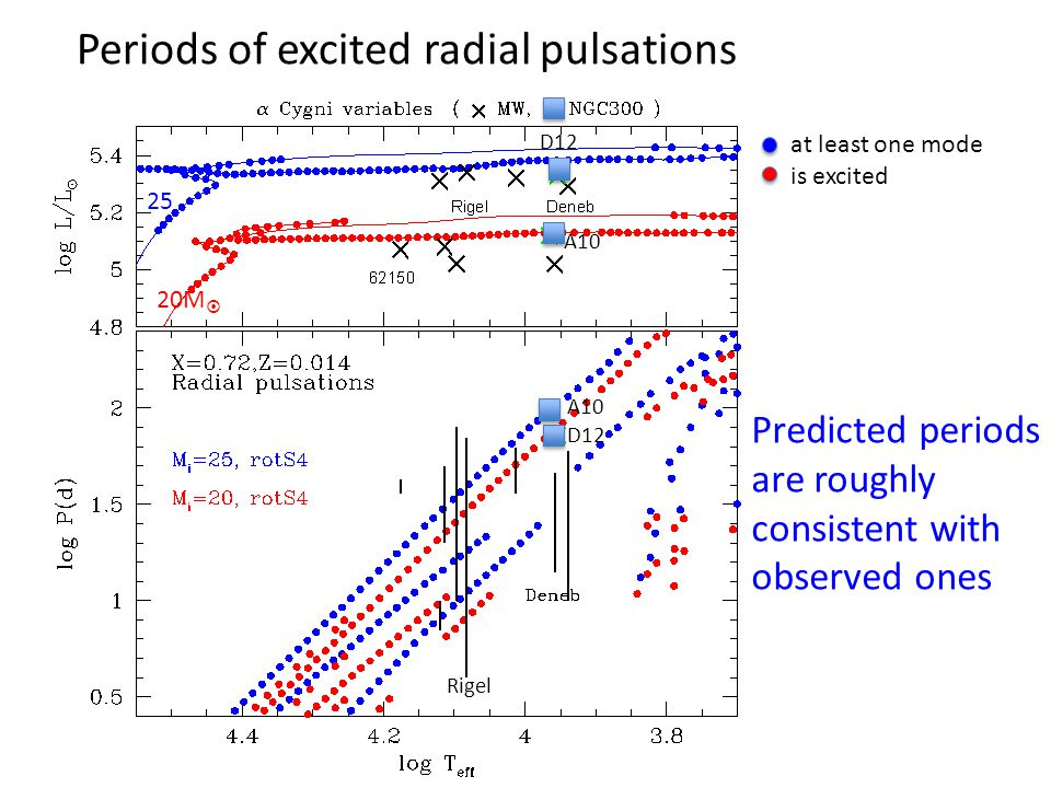 Periods of excited radial pulsations at least one mode is excited A10 D12 Predicted periods are roughly consistent with observed ones Rigel D12 A10 25