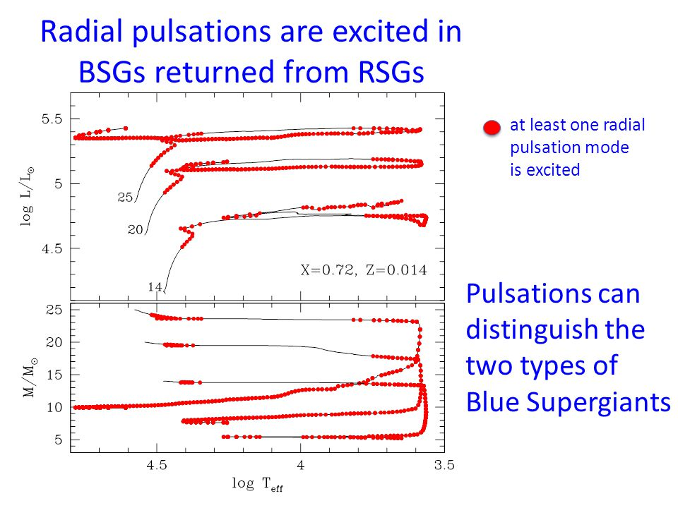 Surface CNO abundances Predicted surface CNO ratios Observed values: Deneb; (N/C, N/O) = (3.4, 0.65) Rigel; = (2.0, 0.46)