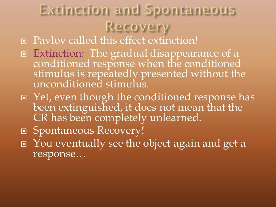 Pavlov called this effect extinction.