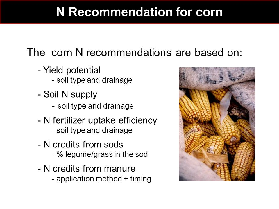 The corn N recommendations are based on: - Yield potential - soil type and drainage - Soil N supply - soil type and drainage - N fertilizer uptake efficiency - soil type and drainage - N credits from sods - % legume/grass in the sod - N credits from manure - application method + timing N Recommendation for corn