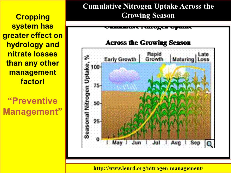 Cropping system has greater effect on hydrology and nitrate losses than any other management factor.