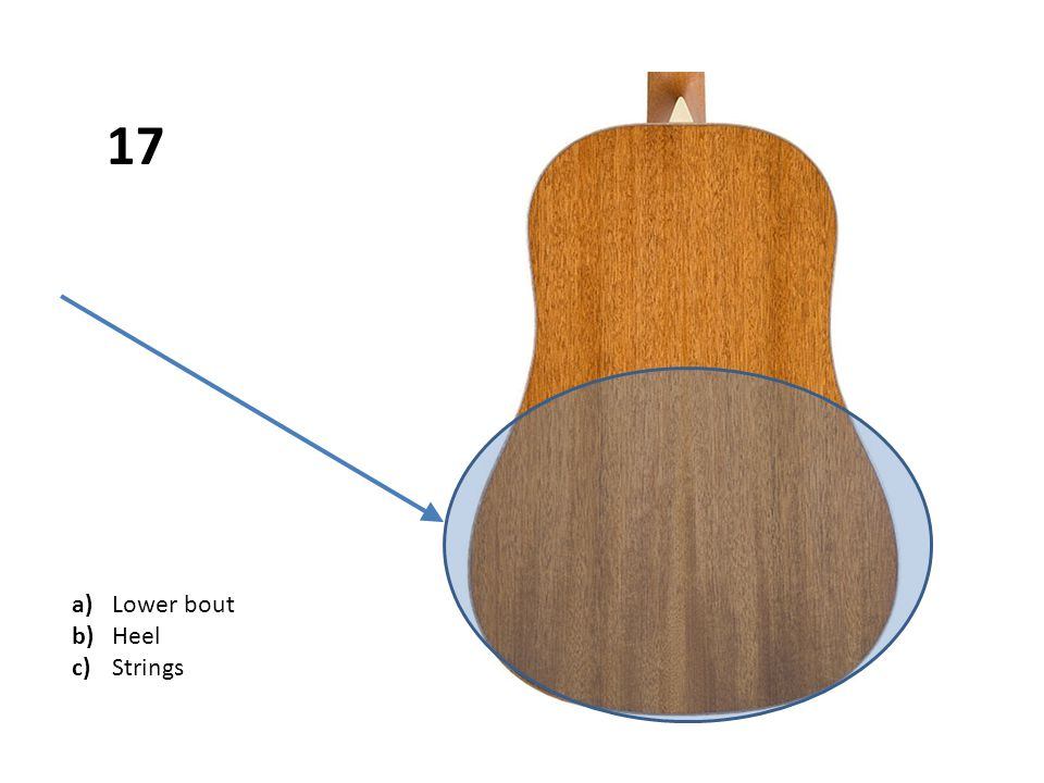 a)Lower bout b)Heel c)Strings 17