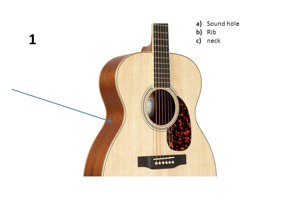 a)Sound hole b)Rib c)neck 1