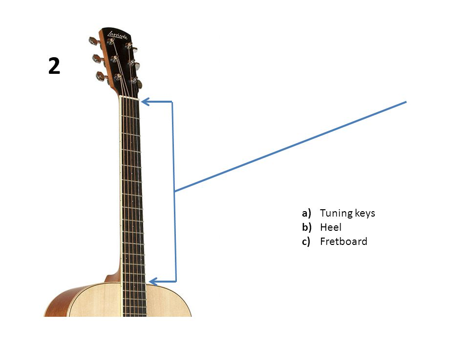 a)Tuning keys b)Fretboard c)Bridge pins 13