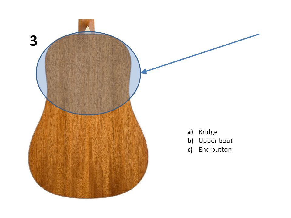 a)Rosette b)Nut c)Sound hole 14