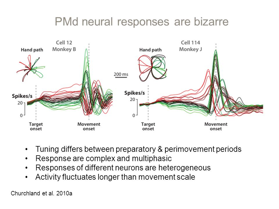 PMd neural responses are bizarre Churchland et al.
