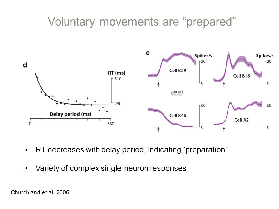 Voluntary movements are prepared RT decreases with delay period, indicating preparation Variety of complex single-neuron responses Churchland et al.