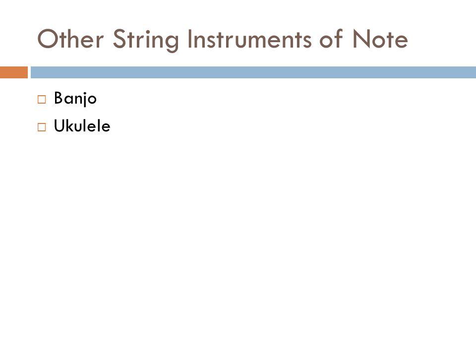 Other String Instruments of Note Banjo Ukulele