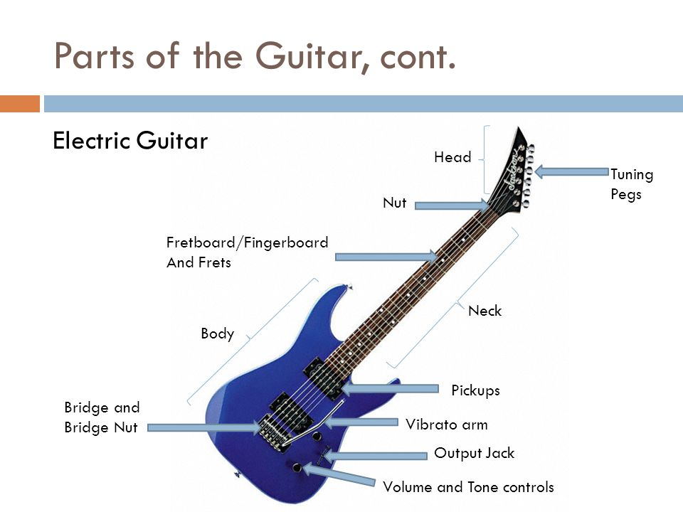 Parts of the Guitar, cont.