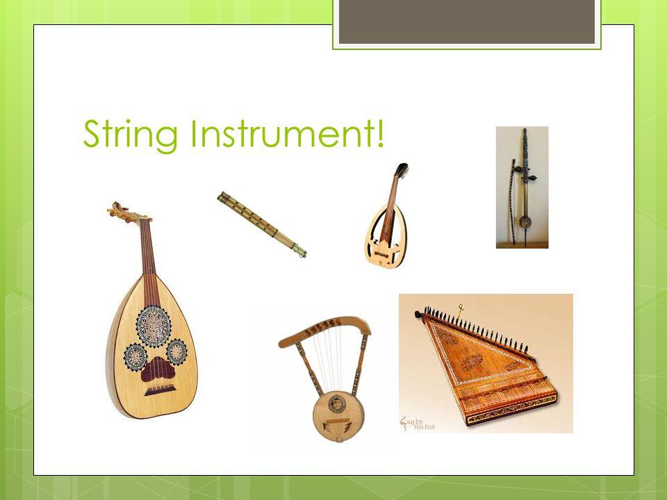 String Instrument!
