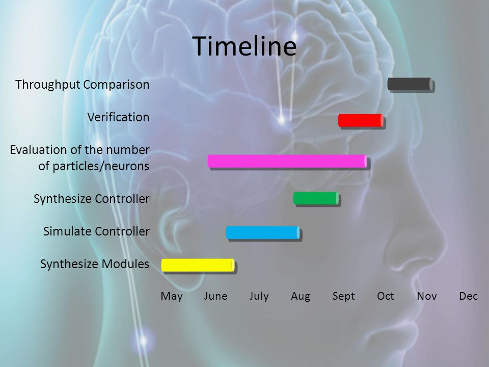Timeline Throughput Comparison Verification Evaluation of the number of particles/neurons Synthesize Controller Simulate Controller Synthesize Modules