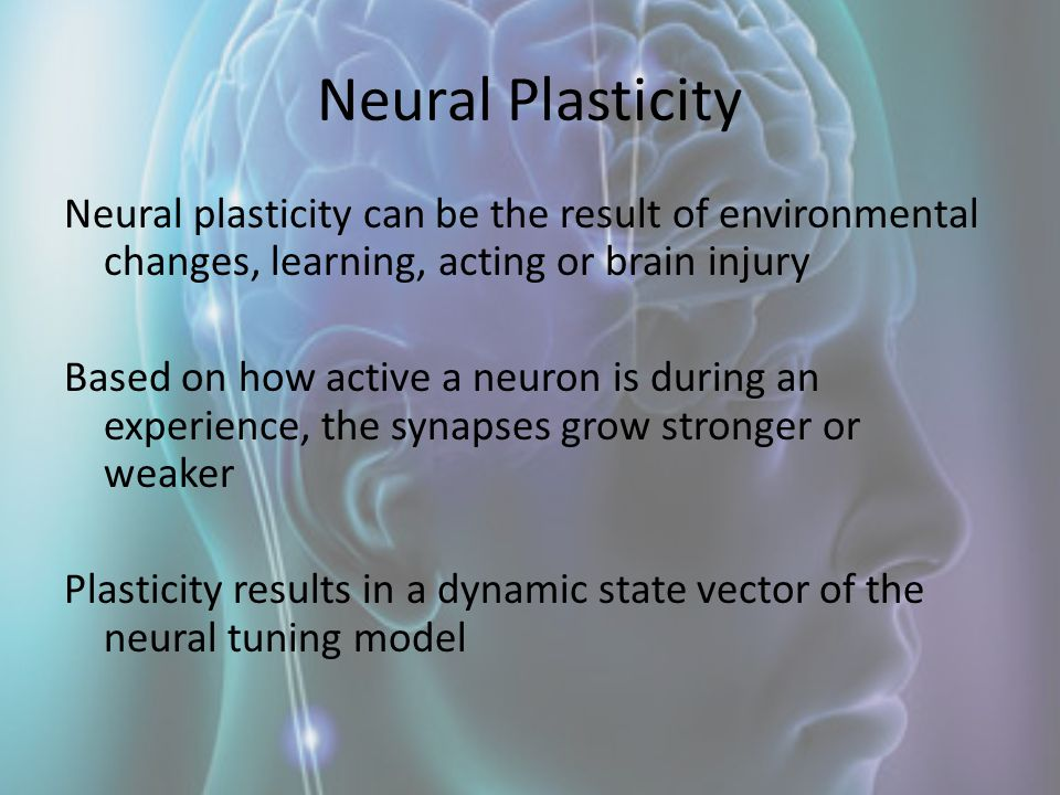 Neural Plasticity Neural plasticity can be the result of environmental changes, learning, acting or brain injury Based on how active a neuron is durin
