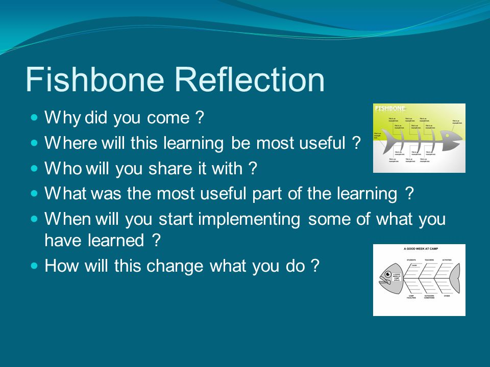 Fishbone Reflection Why did you come . Where will this learning be most useful .