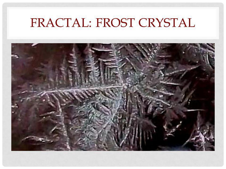 FRACTAL: FROST CRYSTAL