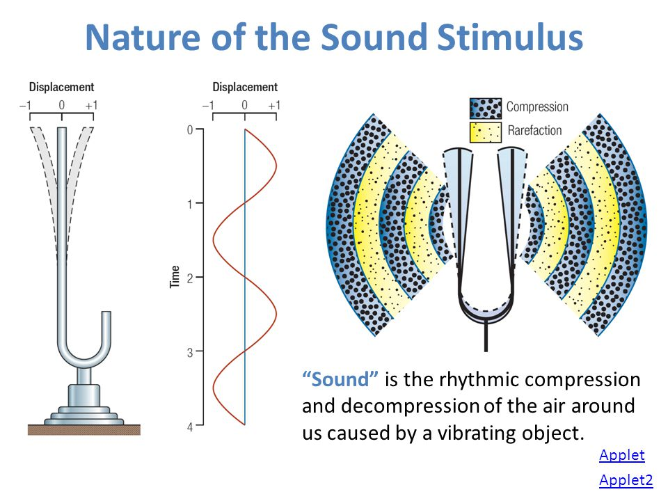 Nature of the Sound Stimulus Sound is the rhythmic compression and decompression of the air around us caused by a vibrating object. Applet Applet2