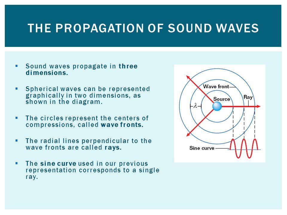 Sound waves propagate in three dimensions.