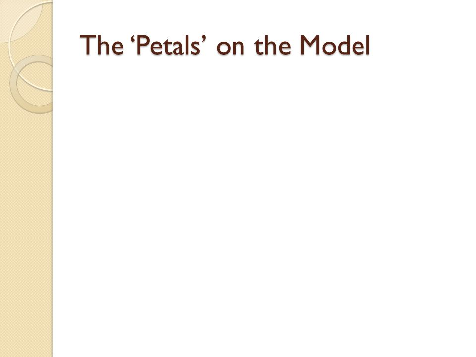 The Petals on the Model