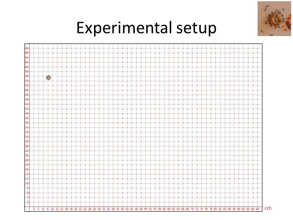 Experimental setup cm