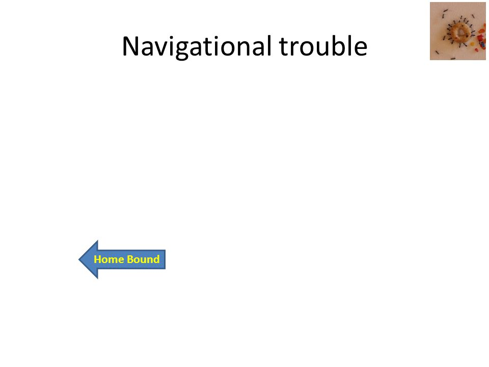 Navigational trouble Home Bound