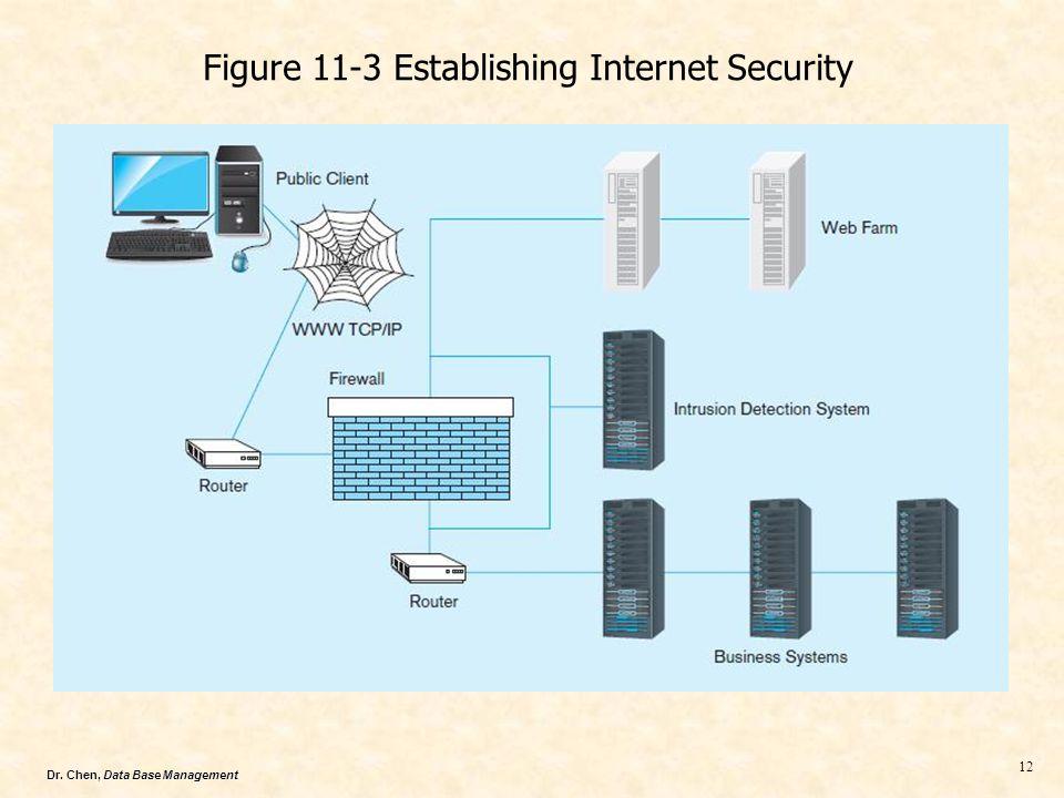 Dr. Chen, Data Base Management 12 Figure 11-3 Establishing Internet Security