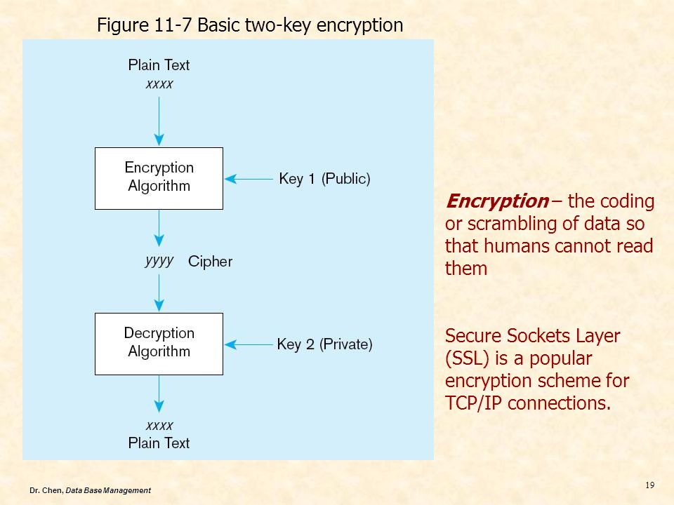 Dr. Chen, Data Base Management 19 Encryption – the coding or scrambling of data so that humans cannot read them Secure Sockets Layer (SSL) is a popula