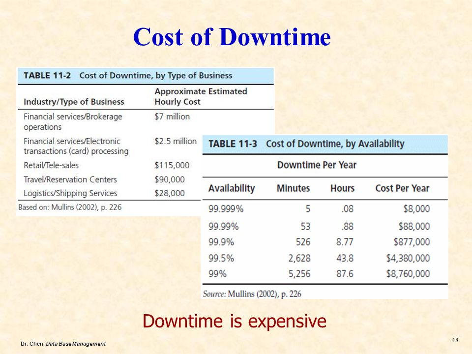 Dr. Chen, Data Base Management 48 Cost of Downtime Downtime is expensive