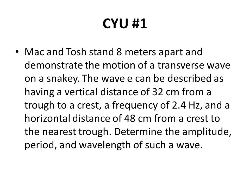 CYU #1 Mac and Tosh stand 8 meters apart and demonstrate the motion of a transverse wave on a snakey.