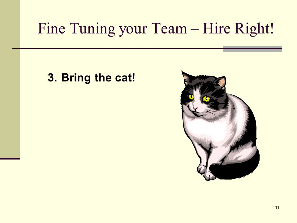 11 Fine Tuning your Team – Hire Right! 3.Bring the cat!