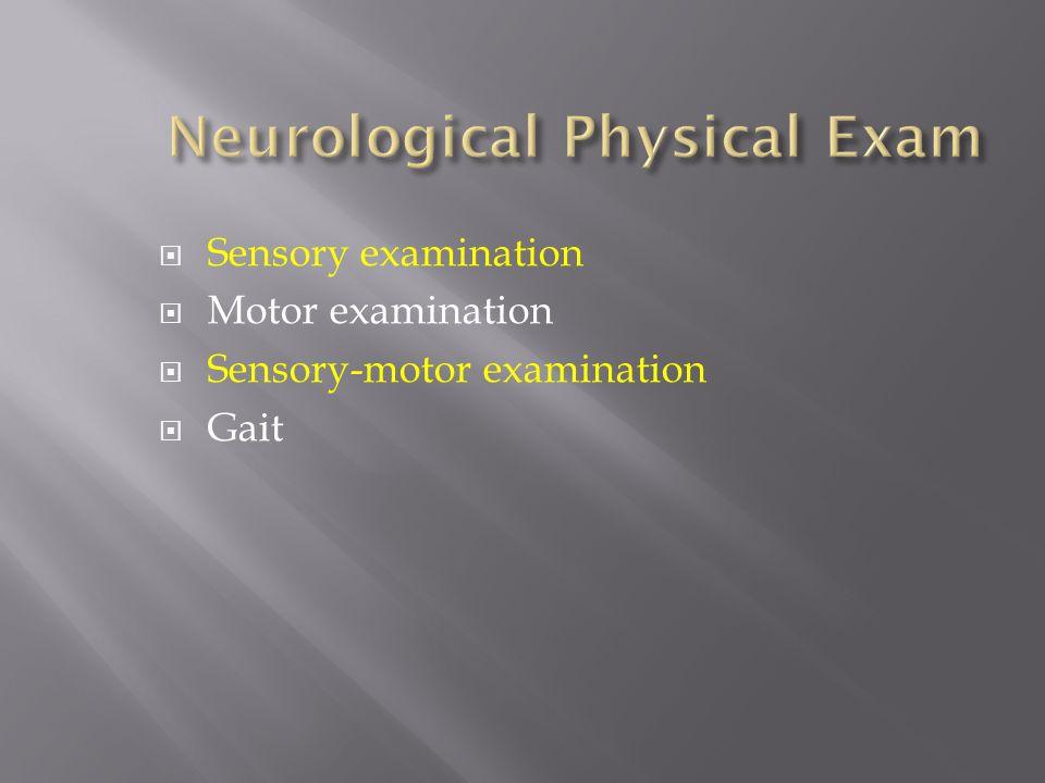 Sensory examination Motor examination Sensory-motor examination Gait