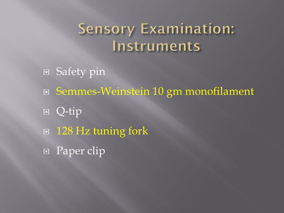 Safety pin Semmes-Weinstein 10 gm monofilament Q-tip 128 Hz tuning fork Paper clip