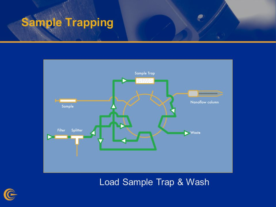 Sample Trapping Load Sample Trap & Wash