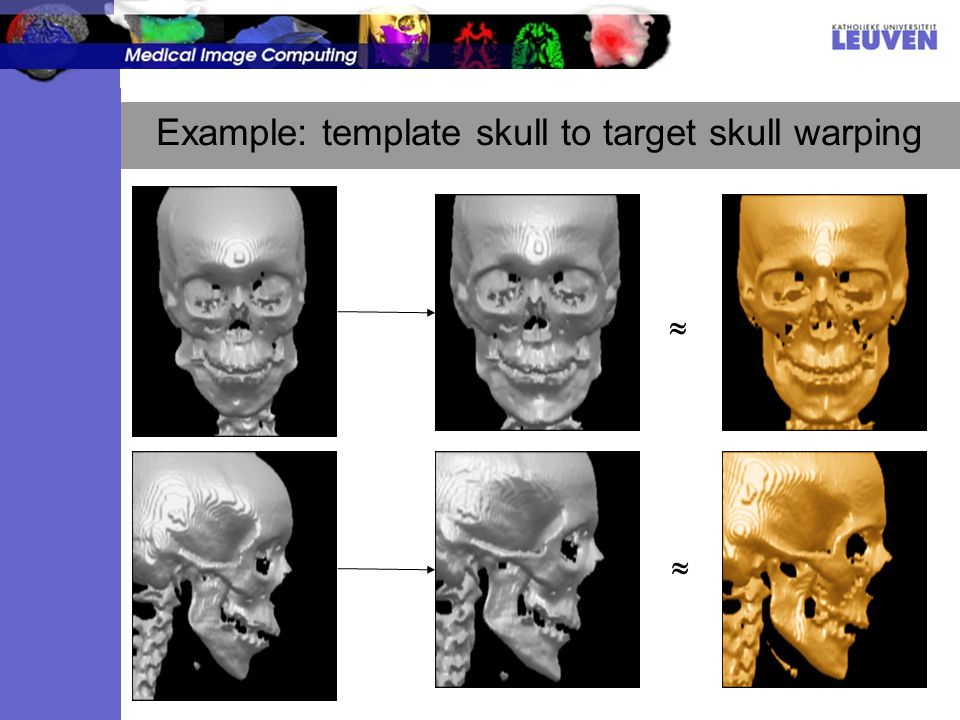 Example: template skull to target skull warping