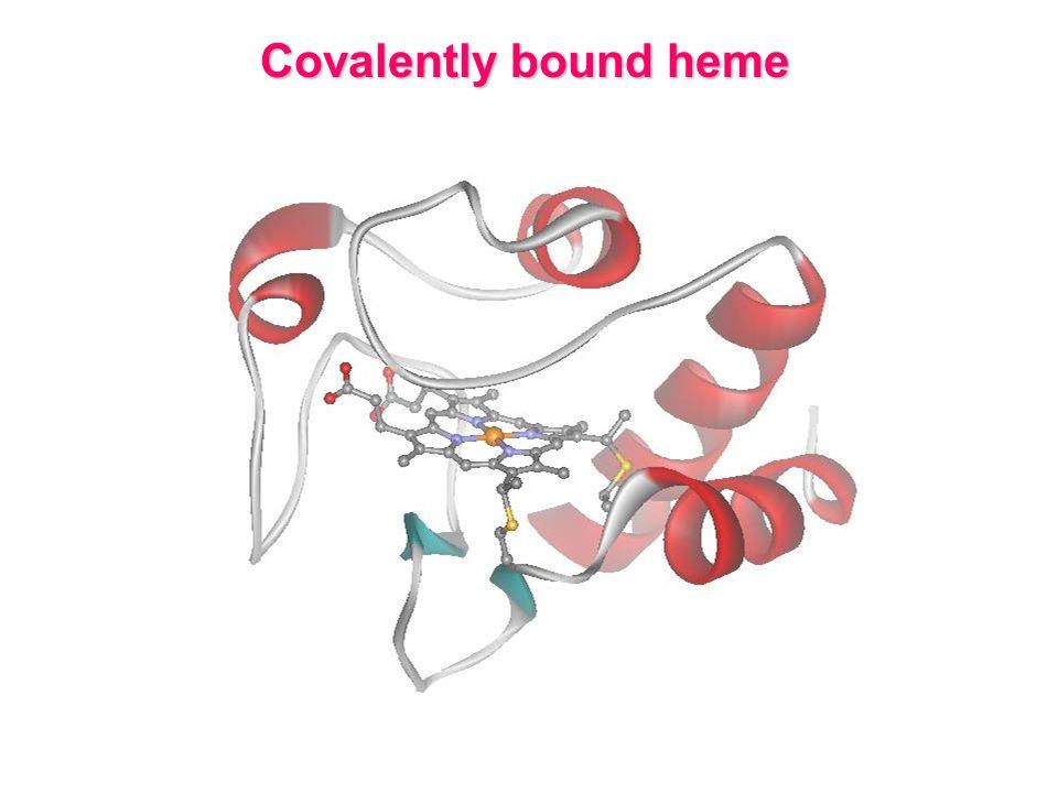 Covalently bound heme