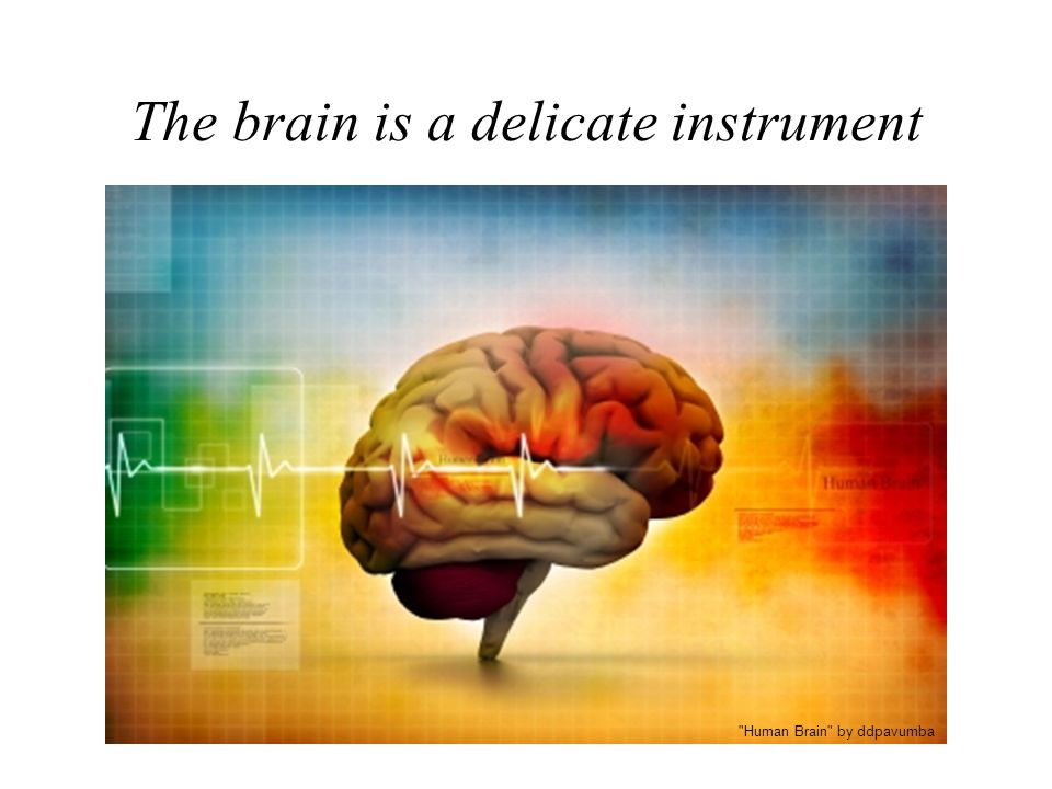 The brain is a delicate instrument