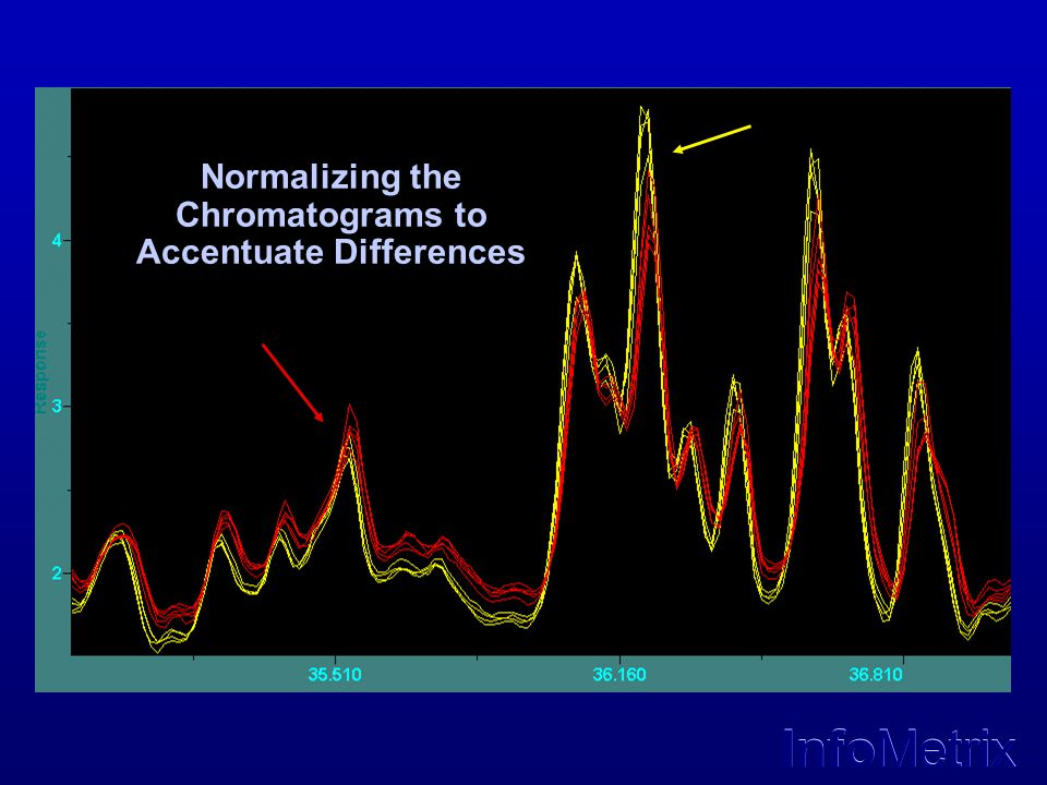 InfoMetrix Normalizing the Chromatograms to Accentuate Differences