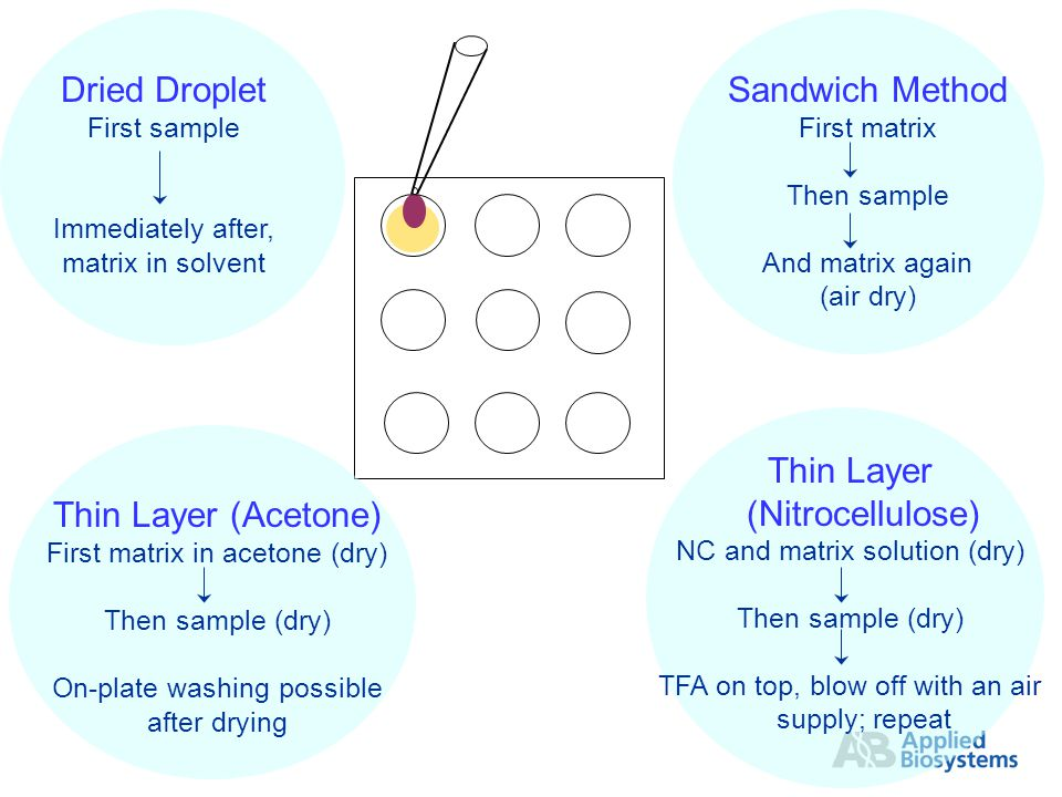 Thin Layer (Acetone) First matrix in acetone (dry) Then sample (dry) On-plate washing possible after drying Thin Layer (Nitrocellulose) NC and matrix solution (dry) Then sample (dry) TFA on top, blow off with an air supply; repeat Dried Droplet First sample Immediately after, matrix in solvent Sandwich Method First matrix Then sample And matrix again (air dry)