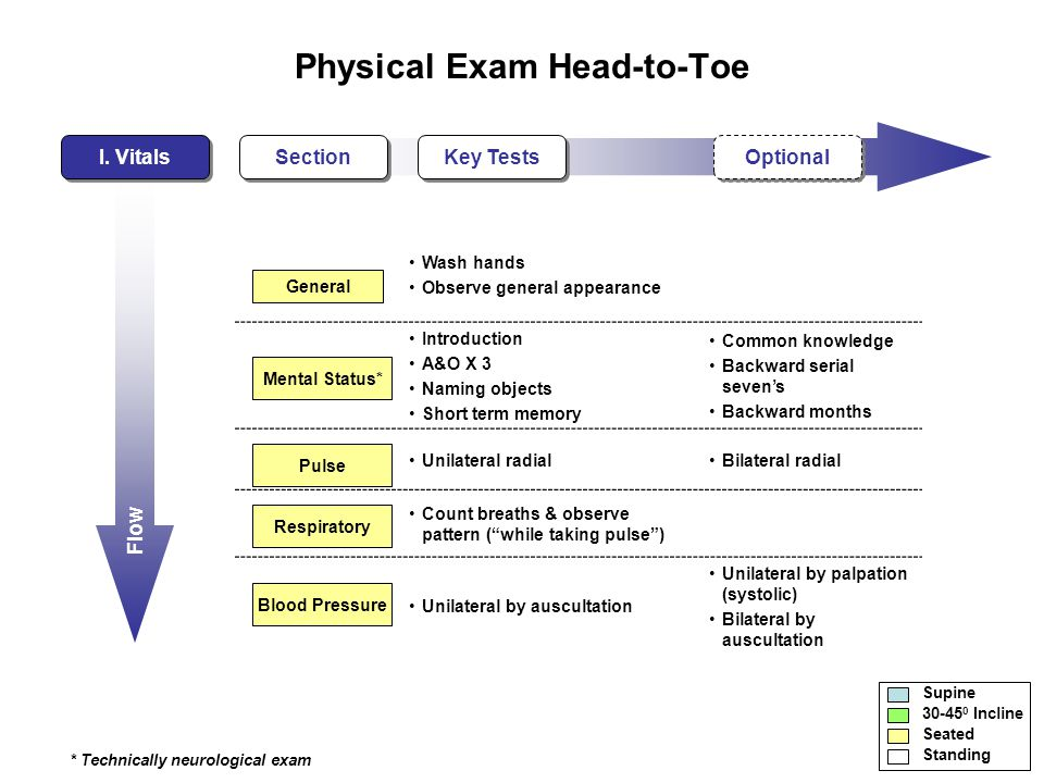 Flow Physical Exam Head-to-Toe I.