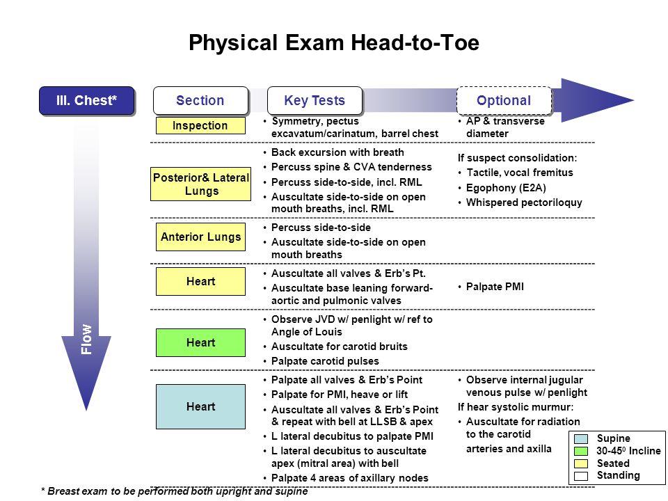 Flow Physical Exam Head-to-Toe III.