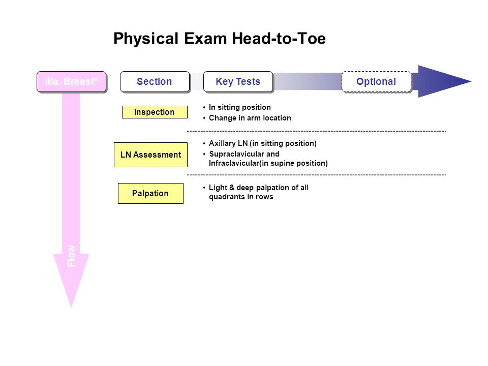 Physical Exam Head-to-Toe Flow IIIa.