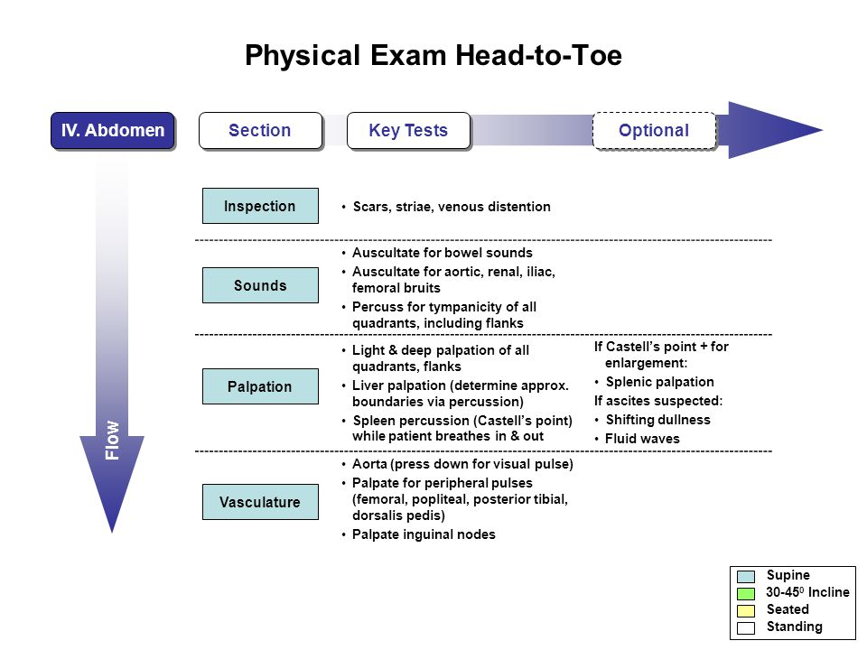 Flow Physical Exam Head-to-Toe IV.