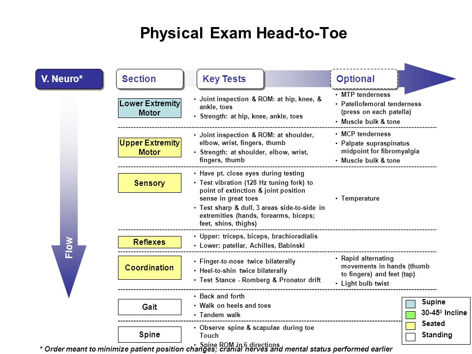 Flow Physical Exam Head-to-Toe V.