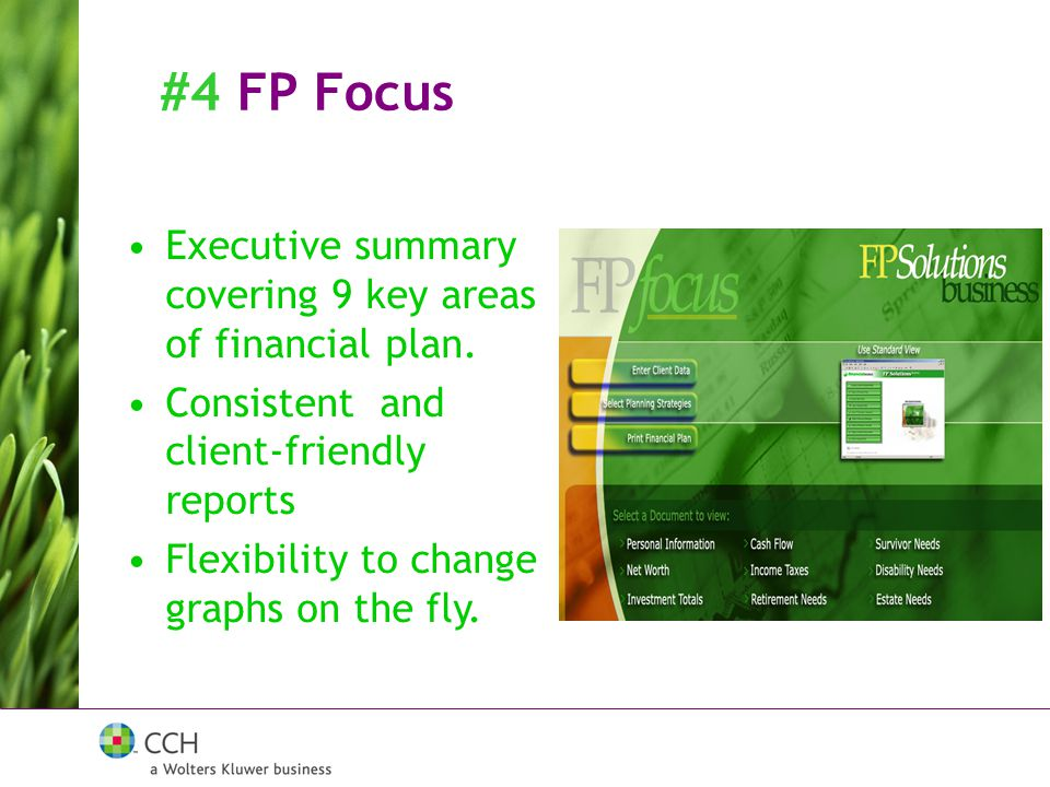 #4 FP Focus Executive summary covering 9 key areas of financial plan.