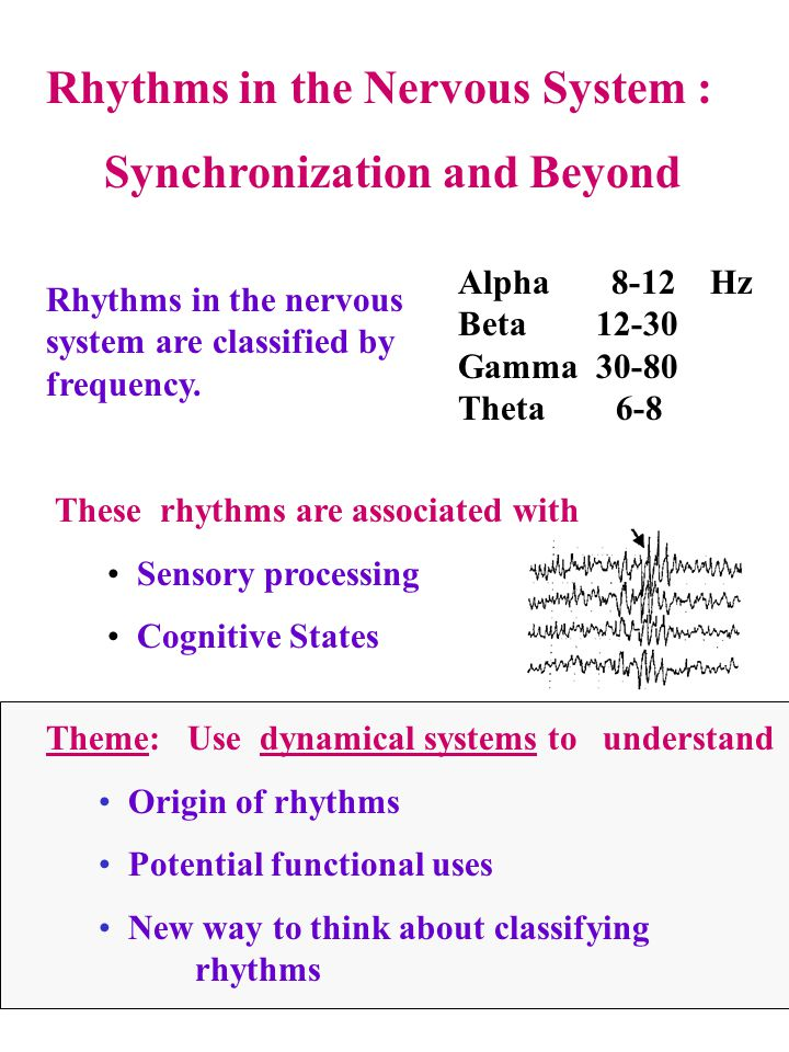 Alpha, Beta, Gamma and Long-Distance Synchronization Alpha 8-12 Hz ; Beta 12-30; Gamma 30-80 Different rhythms are associated with different biophysics Math reveals different synchronization properties Beta can synchronize over a much larger range of conduction delays than gamma (NK, Ermentrout, Whittington, Traub) Alpha actively desynchronizes over distances (S.R.