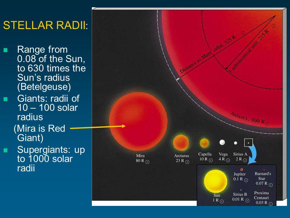 STELLAR RADII : Range from 0.08 of the Sun, to 630 times the Suns radius (Betelgeuse) Giants: radii of 10 – 100 solar radius (Mira is Red Giant) Supergiants: up to 1000 solar radii