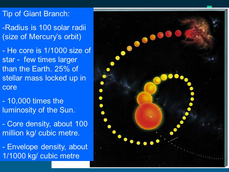 Tip of Giant Branch: -Radius is 100 solar radii (size of Mercurys orbit) - He core is 1/1000 size of star - few times larger than the Earth.