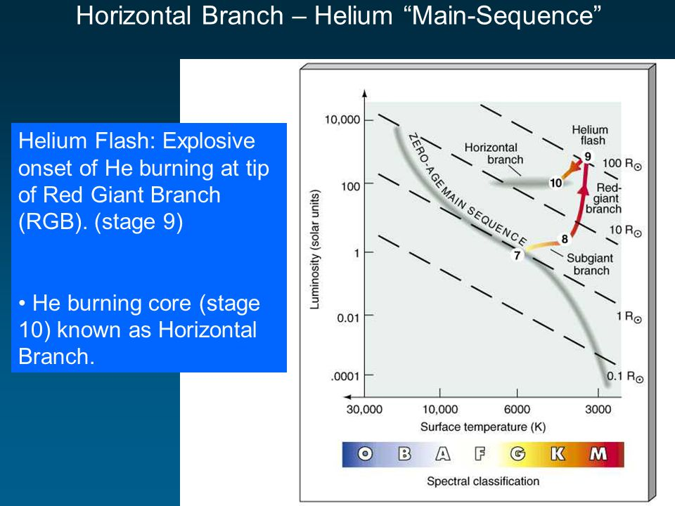 Horizontal Branch – Helium Main-Sequence Helium Flash: Explosive onset of He burning at tip of Red Giant Branch (RGB).