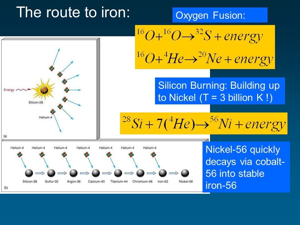 The route to iron: Oxygen Fusion: Silicon Burning: Building up to Nickel (T = 3 billion K !) Nickel-56 quickly decays via cobalt- 56 into stable iron-56
